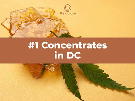 #1 Concentrates in DC [Free Marijuana Gifts]