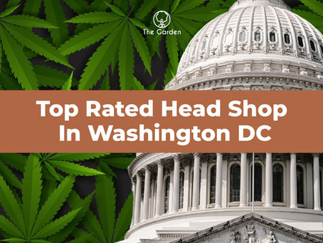 Top Rated Head Shop in Washington DC (Free Weed Gifts)