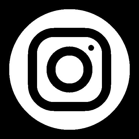 icons8-instagram-circle-480
