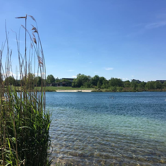 Soft Yoga Flow am Weikerlsee