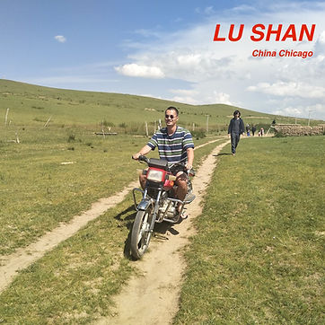 LU SHAN Artist with Issues _ FU INSTITUT