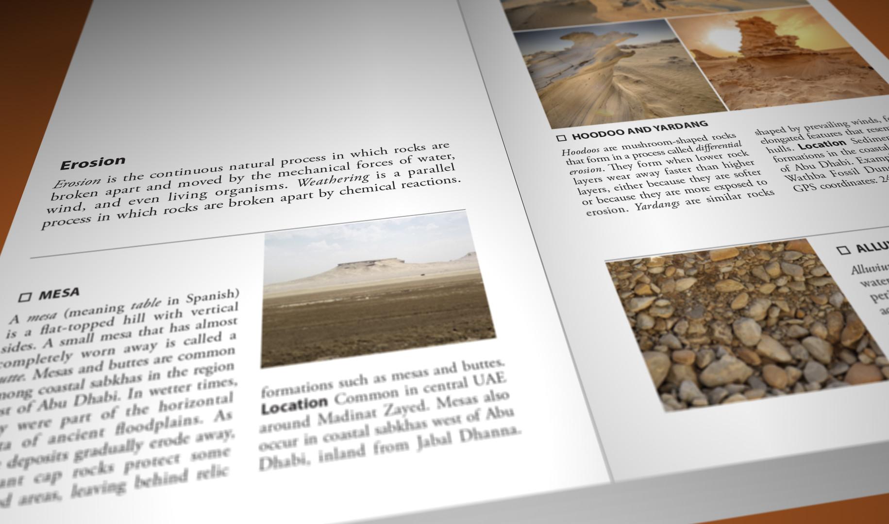 Still Pages 3D 2 (0-00-03-09).jpg