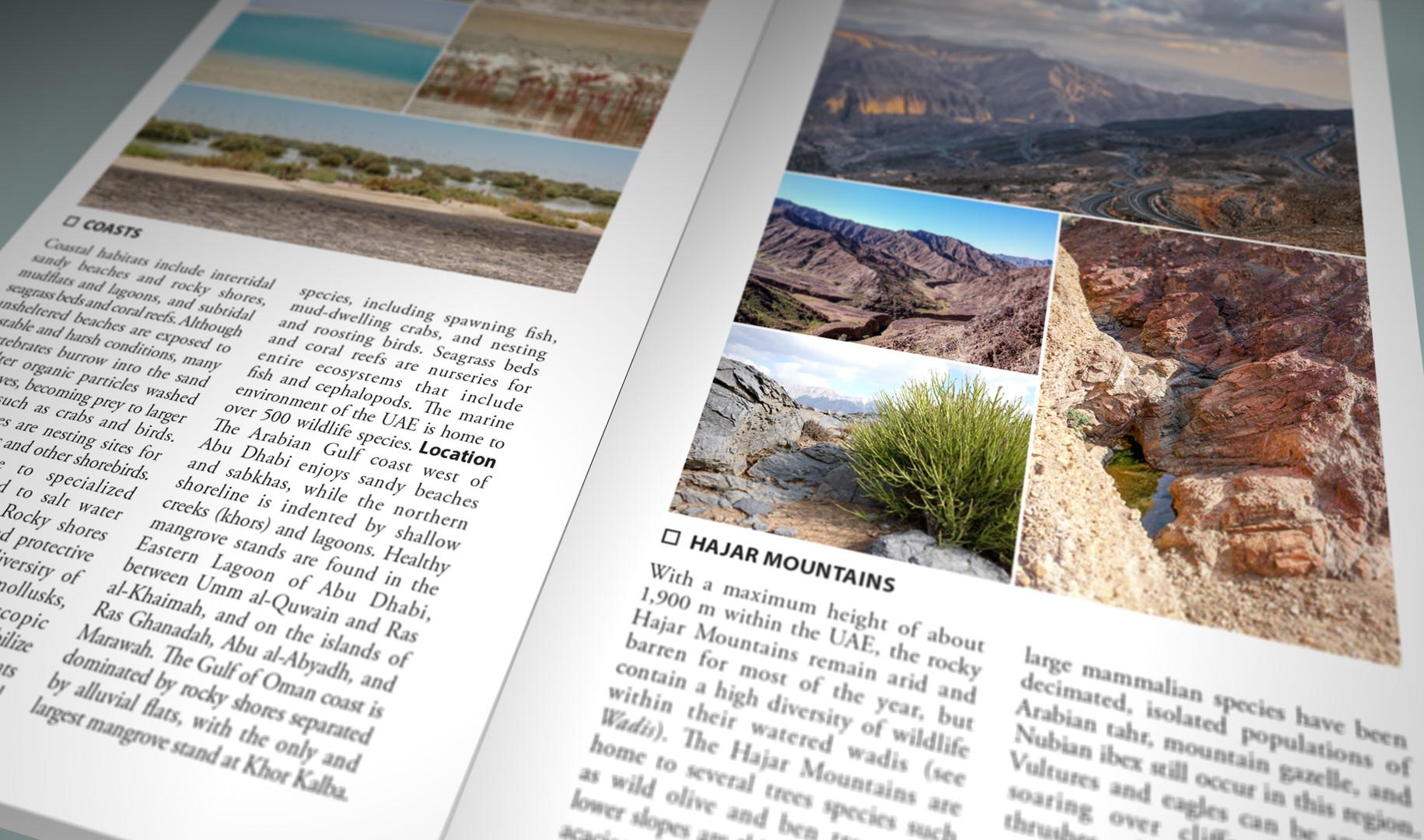 Still Pages 3D 5 (0-00-03-06).jpg