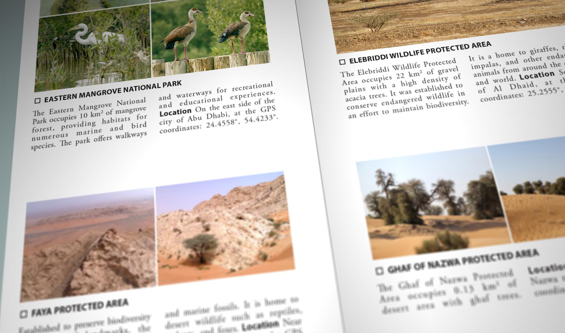 Still Pages 3D 6 (0-00-03-09).jpg