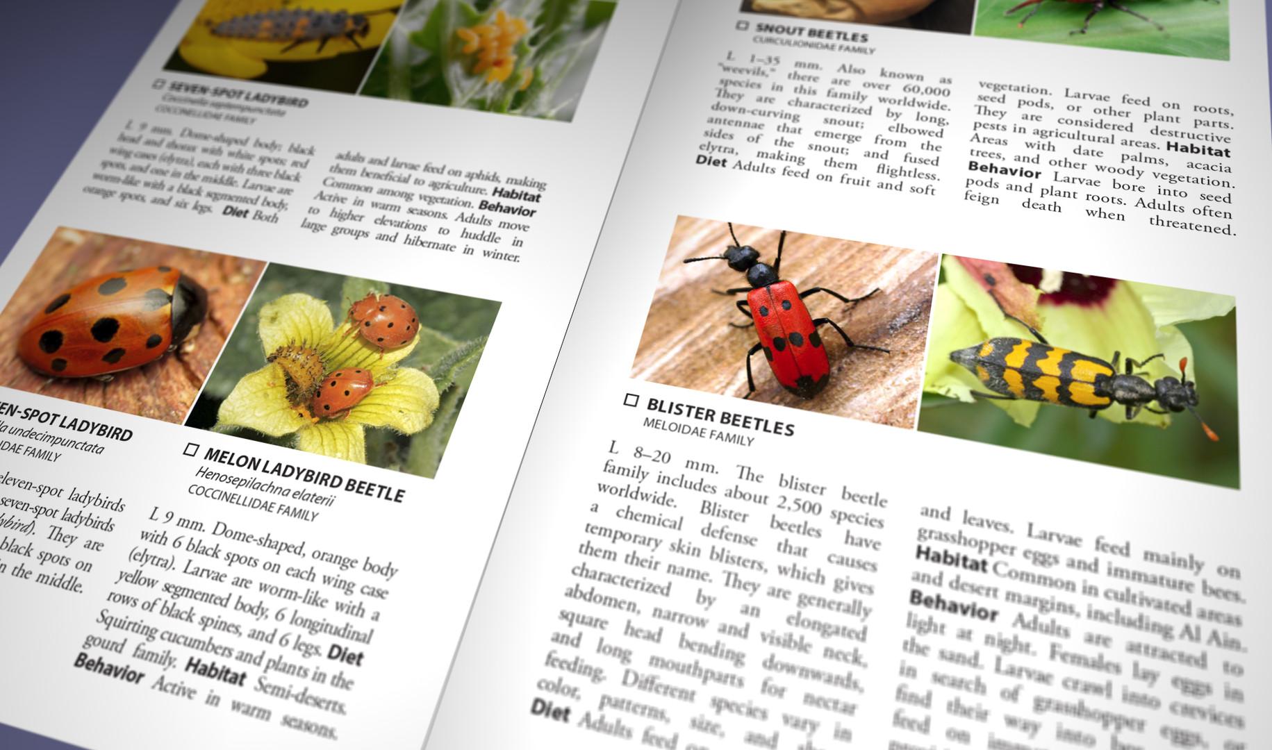 Still Pages 3D 12 (0-00-03-06).jpg