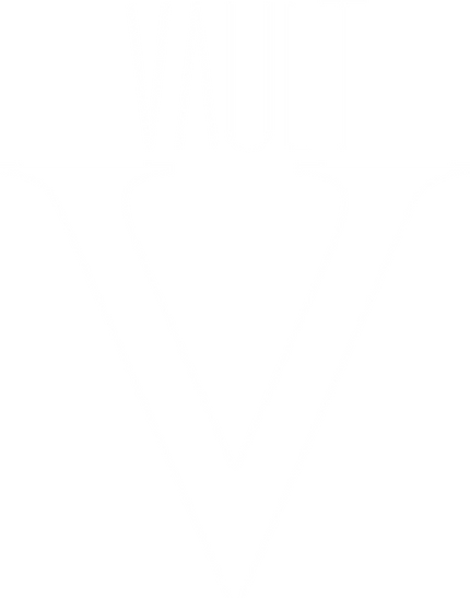 VAULT-WHITE-LOGO.png
