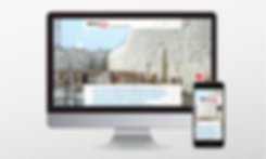 r&p_website 2020_websites5.png