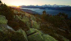 Niederhorn Sonnenaufgang