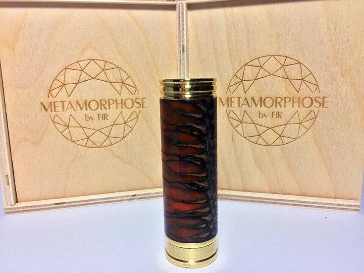 Metamorphose by Fir