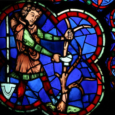 Vin et vigne à Notre-Dame de Paris