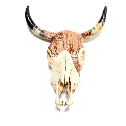 Le crâne de cuivre