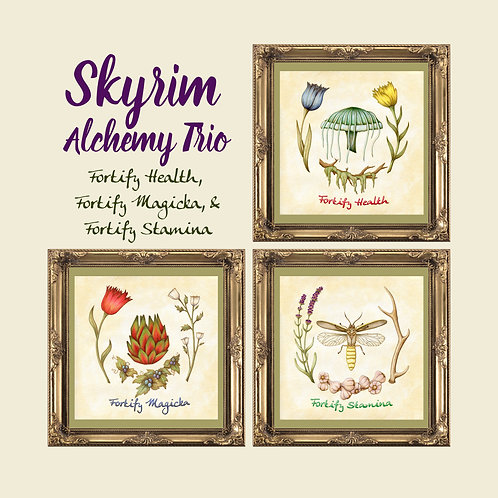 Skyrim Fortify Potions Print Trio  -  Botanical Illustration - Alchemy
