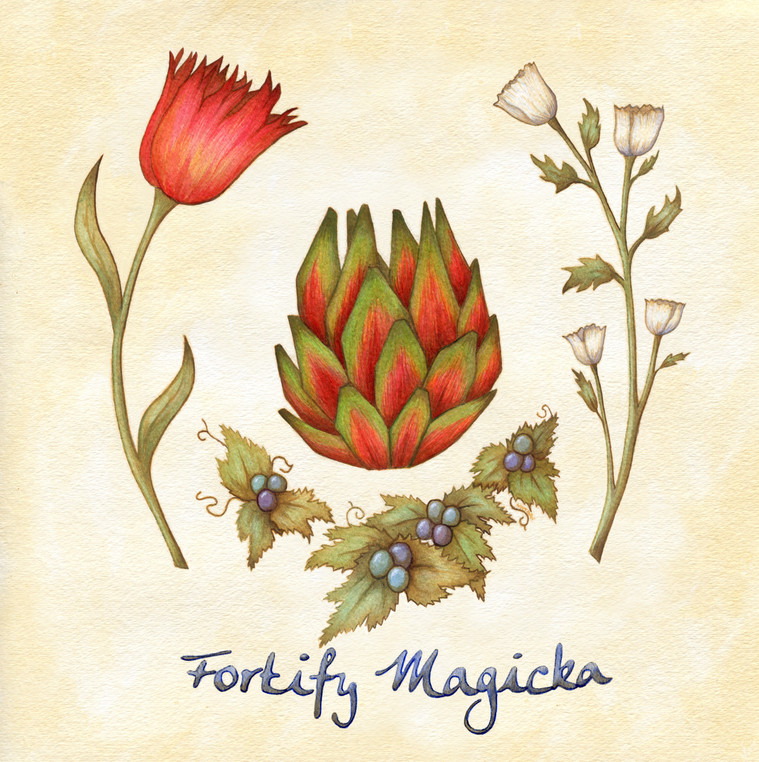 Fortify Magicka