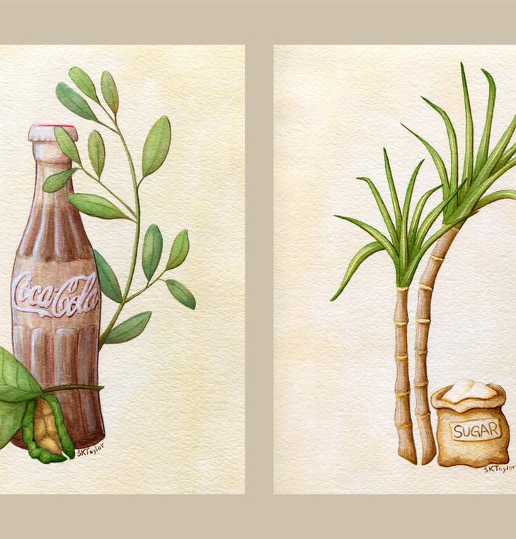 Rum and Coca Cola Set