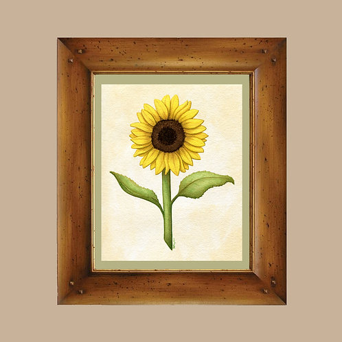 Sunflower Art Print - 4x6, 8x10 - Vintage Botanical Inspired