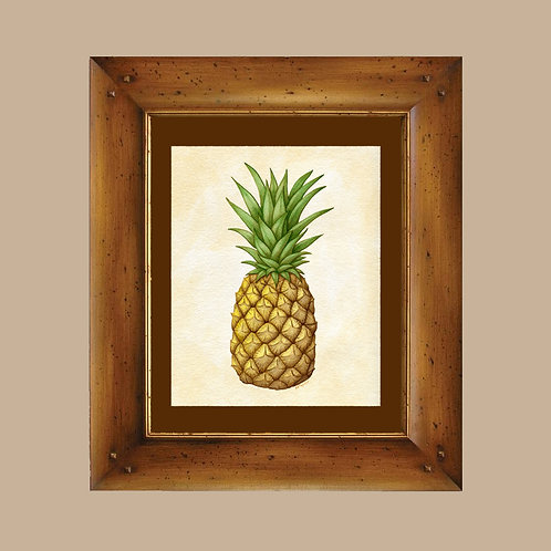 Pineapple Art Print - 4x6, 8x10 - Vintage Botanical Inspired Original Art