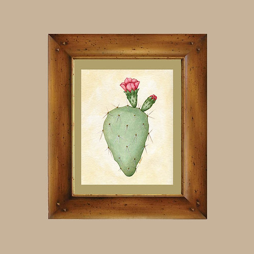 Prickly Pear Cactus in Bloom Arizona Sonoran Desert Cacti Art Print