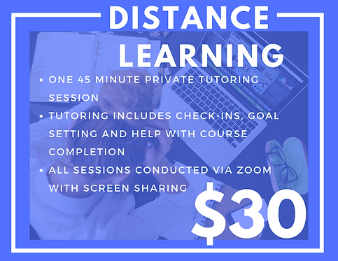 Distance Learning One-on-One Tutoring
