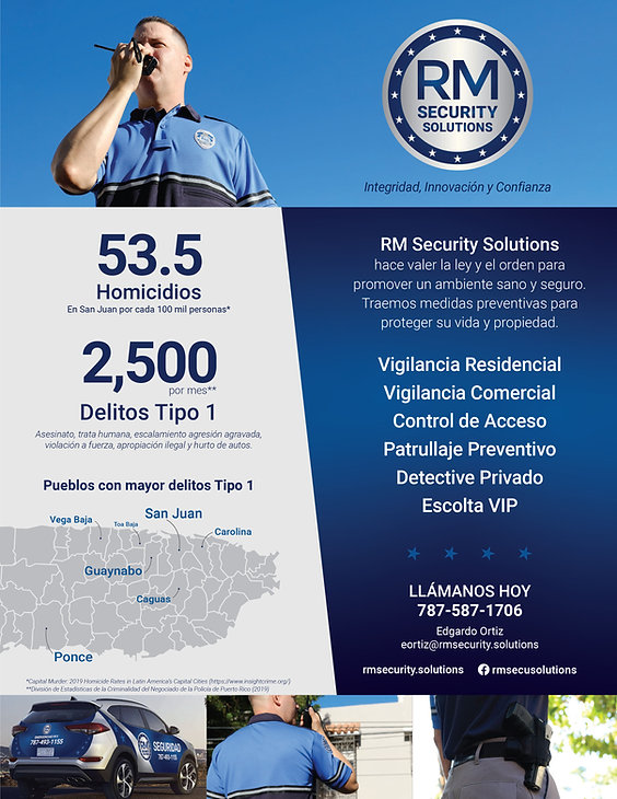 RM_Security_Solutions_Flyer.jpg