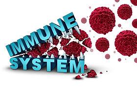 הרצאה על חיזוק המערכת החיסונית, מניעת מחלות