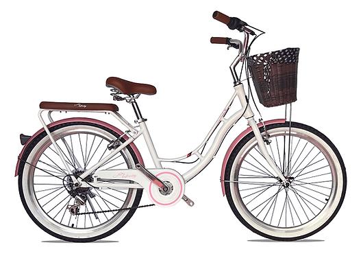 bicicleta con canasta parrilla