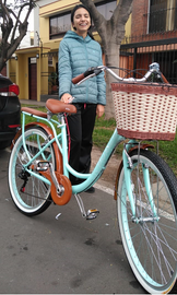 bicicleta canasta de mimbre aro 26.png