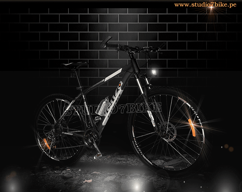 bicicleta 29.png