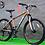 bicicletas petrolizada