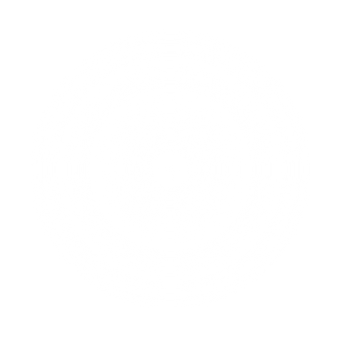 white radial gradient-100.png