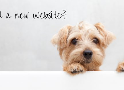 Build a Website that Delivers Results