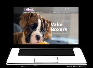 Valor Boxers-laptop.png