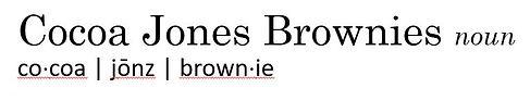 Cocoa Jones Brownies - dictionary.JPG