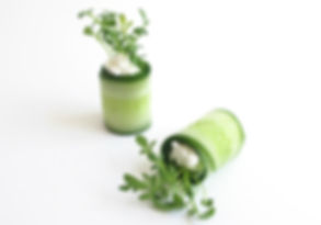 2BFresh Microleaves cucumber roll