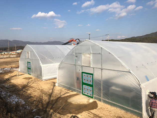 EZ Farms, South Korea