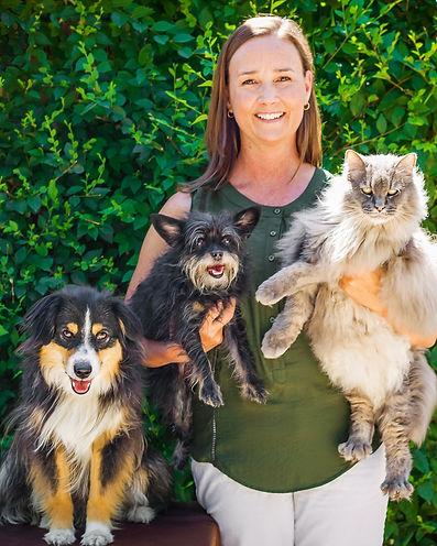 grand junction animal hospital senior pet care expert