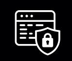 DSZ Security Icon.png