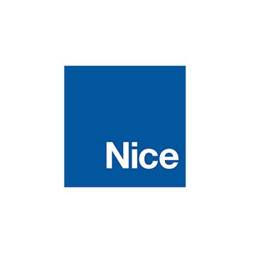 NICE logo-1.png