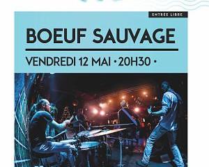 Boeuf sauvage vendredi 12 mai - 20h30