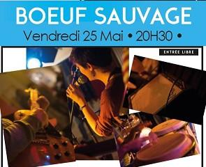 Bœuf sauvage - Ven 25/05 - 20h30