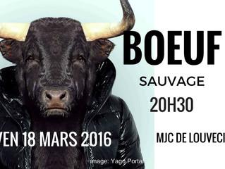 Boeuf sauvage vendredi 18 mars