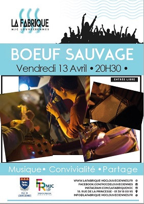 boeufsauvage_lafabriquemjc