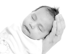 Newborn Photography in North London