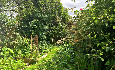 Photography Studio Garden North London