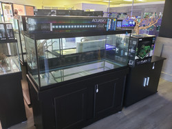 Small tanks, medium tanks, and even BIG tanks...whatever size you need, we can provide!