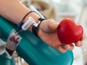 Junho Vermelho: vereadora Sandra Santana (PSDB) apresenta PL que incentiva a doação de sangue