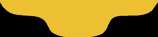 bg-logomarca.png