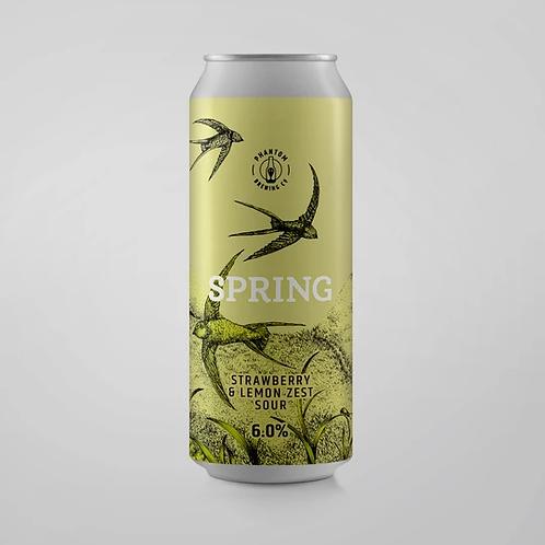 Phantom Brewing Spring Strawberry & Lemon Zest Sour