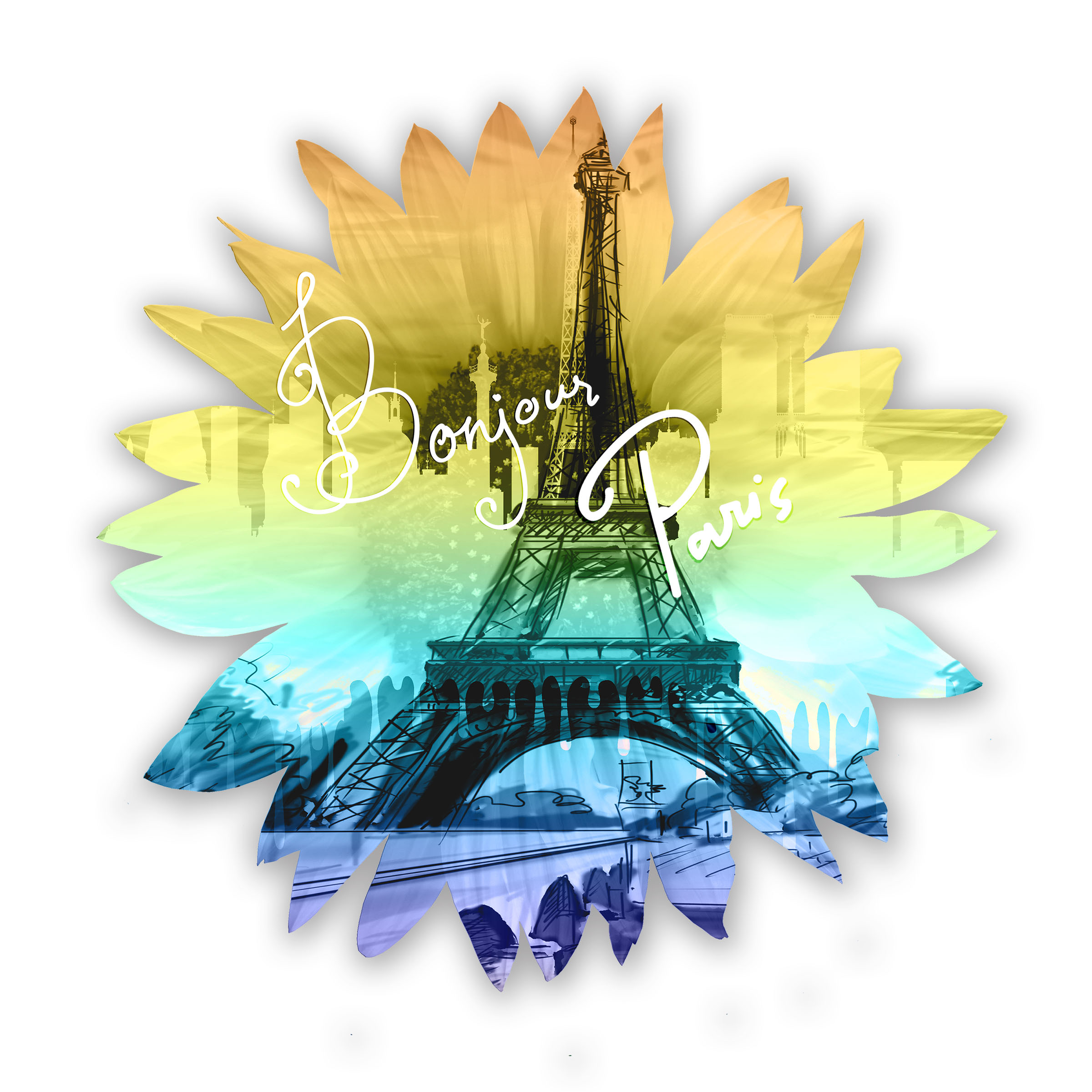 NYC Alliance daisy in paris.jpg