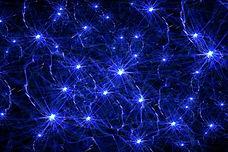 neurons-illustration_fJQ-WKr_.jpg
