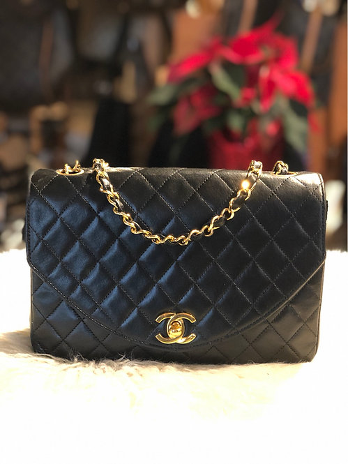 Chanel Quilted Crossbody Bag